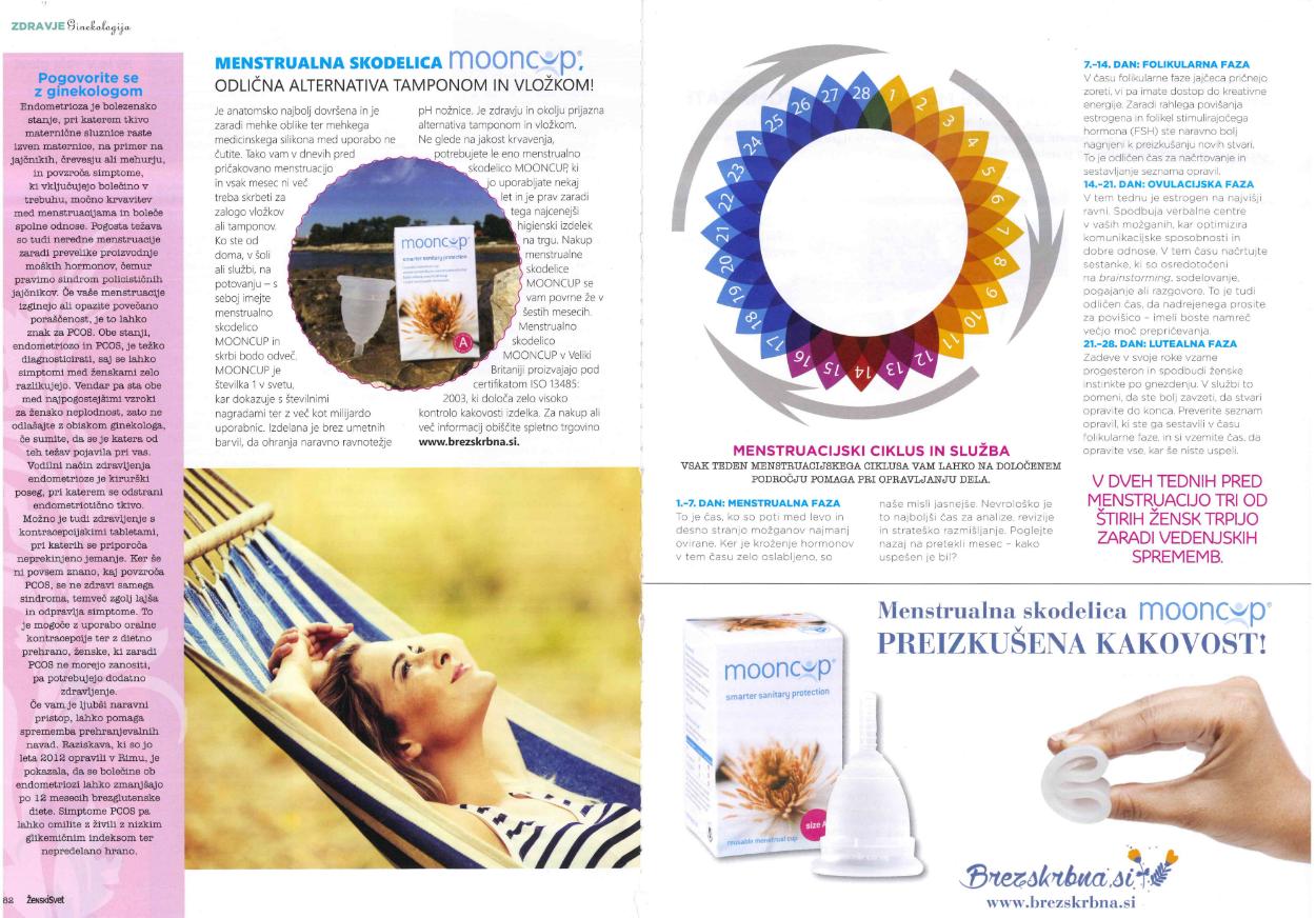 pdf člnek v reviji ženski svet